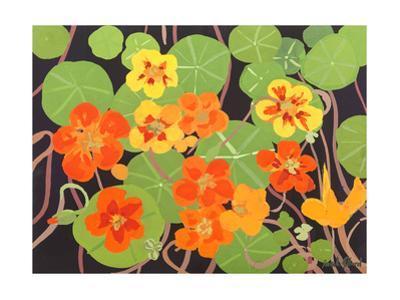 Nasturtiums by Sarah Gillard