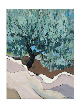 Olive Tree in Crevice, 2010