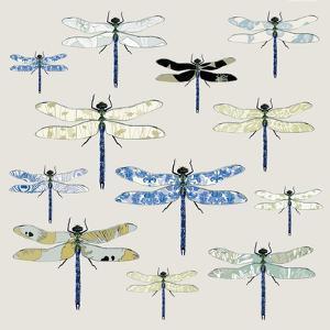 Odonata, 2008 by Sarah Hough