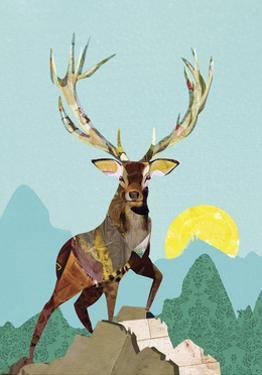 Elk on a Mountain by Sarah Jackson