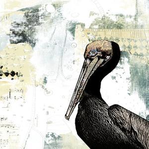Pelican Palm by Sarah Ogren