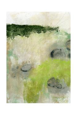 Rocks by Sarah Ogren