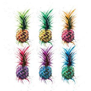 Pineapple Rainbow by Sarah Stokes