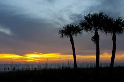https://imgc.allpostersimages.com/img/posters/sarasota-sunset-on-the-crescent-beach-siesta-key-florida-usa_u-L-PN71OT0.jpg?p=0