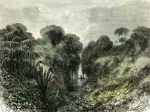 Sarayacu River Peru 1869
