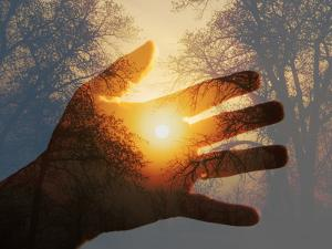 Double Exposure with a Sunrise behind Trees with a Hand by Sari ONeal