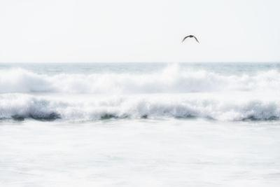 Sea Waves with Flying Seagull by Sarosa