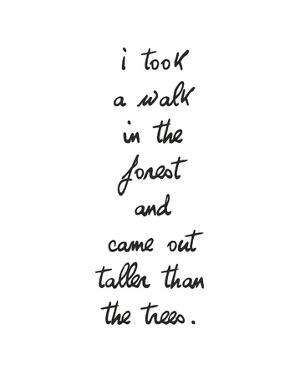 Forest Walk by Sasha Blake