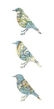 Map Birds by Sasha Blake