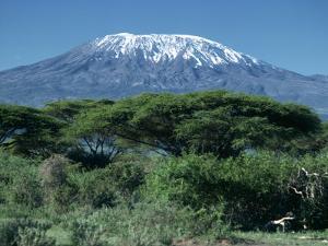 Mount Kilimanjaro, Tanzania, East Africa, Africa by Sassoon Sybil