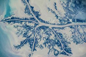 Satellite view of Mississippi River Delta, Louisiana, USA
