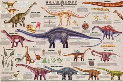 Sauropods Educational Dinosaur Science Chart Poster