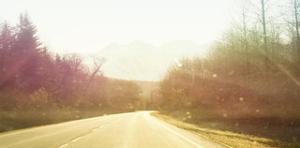 Alsaska Roadtrip by Savanah Plank