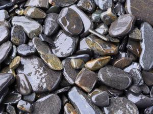 Beach rock detail by Savanah Plank