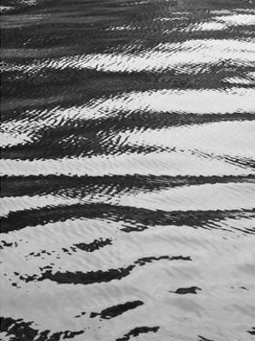 Water ripple by Savanah Plank