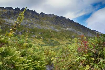 Alaska, Hatchers Pass