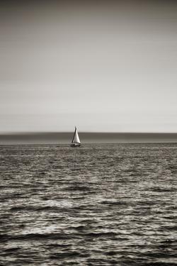 Seattle, Sailboat in Elliott Bay by Savanah Stewart