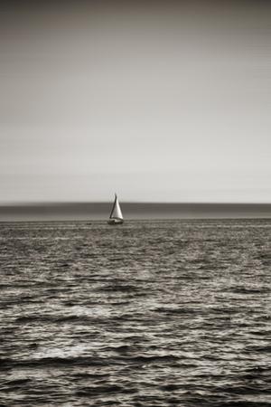 Seattle, Sailboat in Elliott Bay