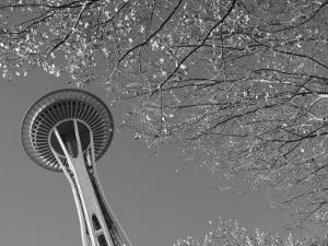 Space Needle, Seattle, Washington, USA by Savanah Stewart