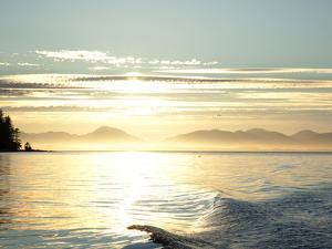 Sunset, Southeast Near Ketchikan, Alaska, Usa by Savanah Stewart