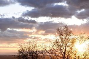 USA, Alaska, Anchorage, sunset from hillside by Savanah Stewart