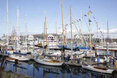 USA, Washington State, Port Townsend, Wooden Boat Festival.