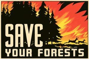 Save Your Forests Poster