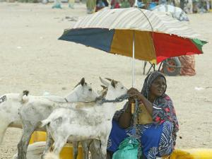 A Somaliland Woman Waits for Customers, in Hargeisa, Somalia September 27, 2006 by Sayyid Azim