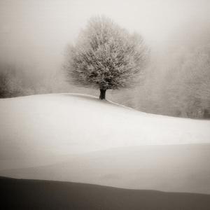 Winter Degradee by SC