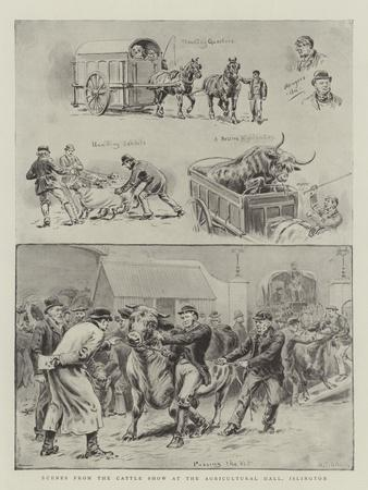 https://imgc.allpostersimages.com/img/posters/scenes-from-the-cattle-show-at-the-agricultural-hall-islington_u-L-PUSKYM0.jpg?p=0