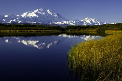 https://imgc.allpostersimages.com/img/posters/scenic-lake-view-of-mt-mckinley-denali-national-park-alaska-usa_u-L-PN6SID0.jpg?p=0