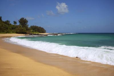 https://imgc.allpostersimages.com/img/posters/scenic-of-secret-beach-kauai-hawaii-usa_u-L-PN6PGP0.jpg?p=0