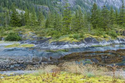 https://imgc.allpostersimages.com/img/posters/scenic-view-of-ford-s-terror-tongass-national-forest-alaska-usa_u-L-PN6QPZ0.jpg?artPerspective=n
