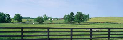 Scenic view of horse farm, Woodford County, Kentucky, USA