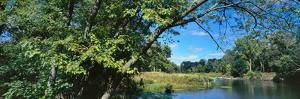 Scenic view of marsh, Chiwaukee Prairie, Kenosha County, Wisconsin, USA