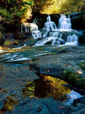 Scenic view of waterfall, Alsea Falls, South Fork Alsea River, Benton County, Central Coast Rang...