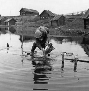 Dorf in Karelien, 1943 by Scherl