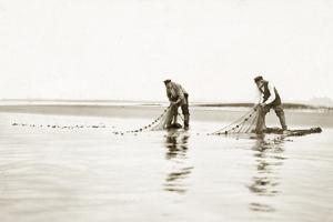 Fishermen Take in their Nets, 1911 by Scherl Süddeutsche Zeitung Photo