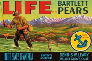 Life Brand Bartlett Pears by Schmidt Lithograph Co