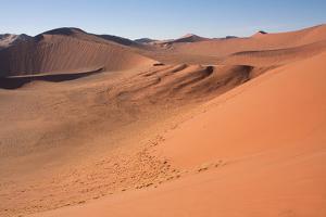 Red Dunes of Sossusvlei by schoolgirl