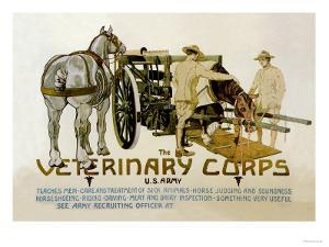 Veterinary Corps. U.S. Army by Schreck