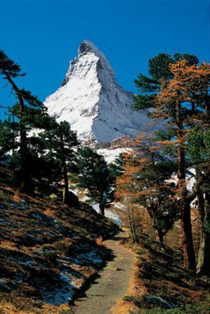 Schreckhorn Berner Oberland