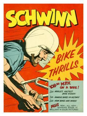 Schwinn Bicycle Story
