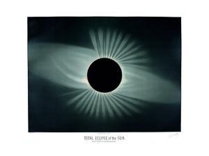 Total Solar Eclipse, 1878 by Science Business Library