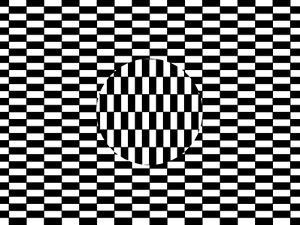 Ouchi Illusion by Science Photo Library