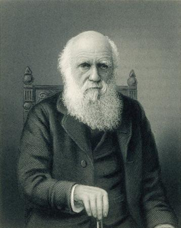 Charles Darwin, English Naturalist by Science Source