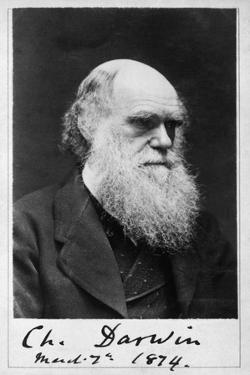Charles Robert Darwin, English Naturalist by Science Source