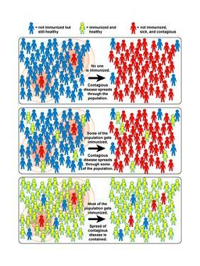 Herd Immunity by Science Source