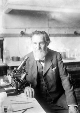 Ilya Ilyich Mechnikov, Russian Immunologist by Science Source