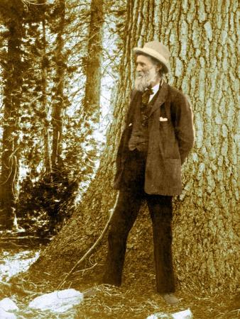 John Muir, Scottish-American Naturalist